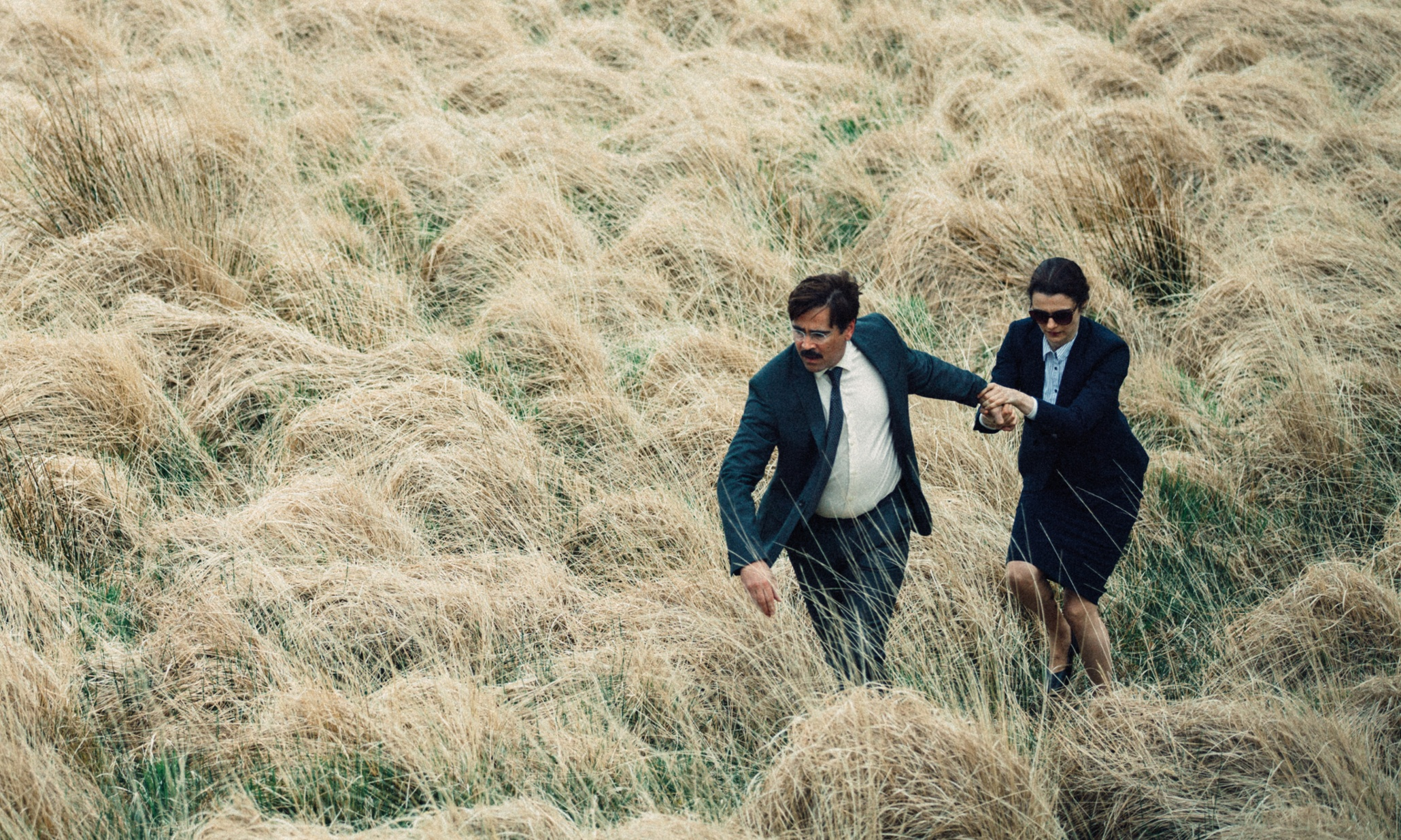The Lobster'den İlk Fragman