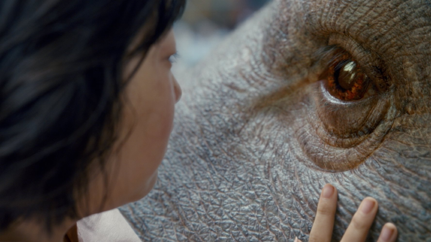 Okja (2017)