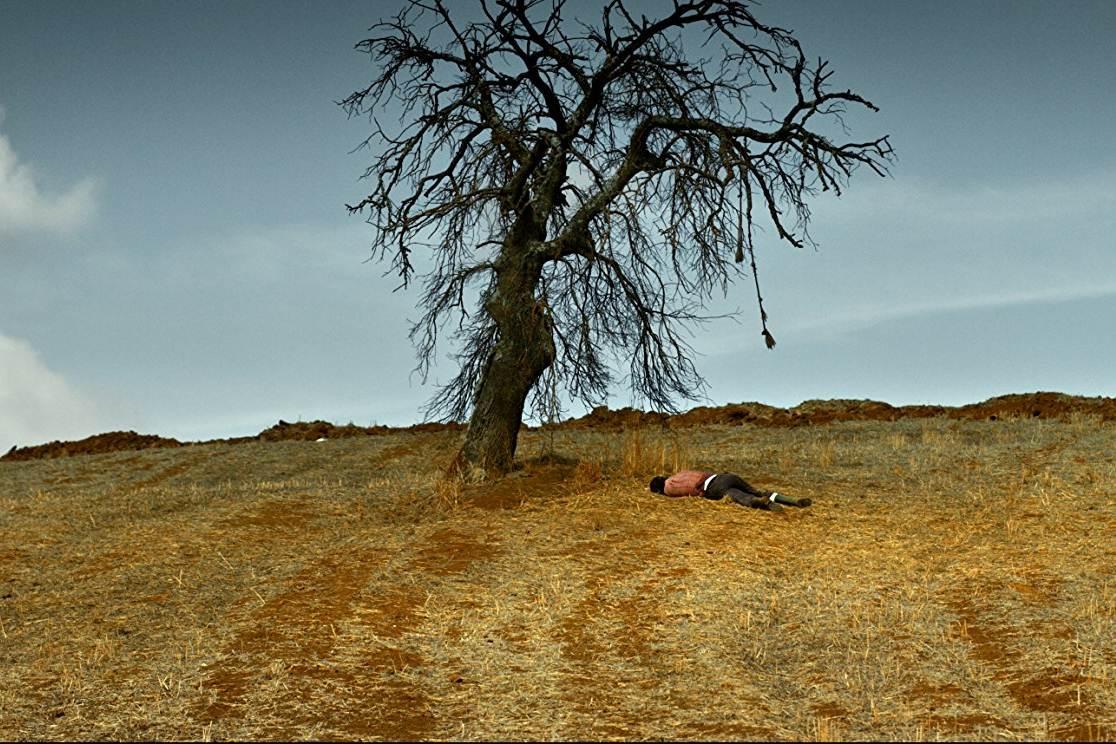 Ahlat Ağacı (2018): Bir Ağaç ve Ona Benzeyen, Biçimsiz Meyvesi