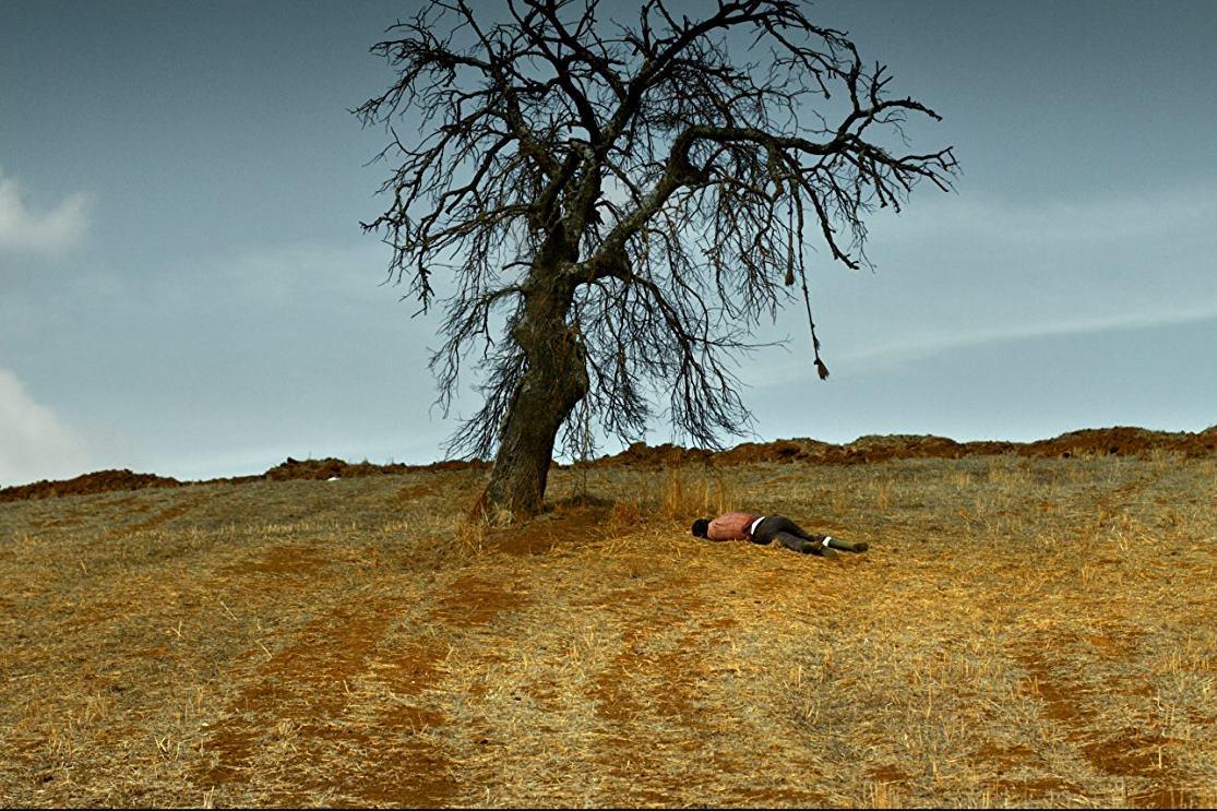 Ahlat Ağacı (2018): Bilge'yle Konuşan Bir Sisyphos Gördüm