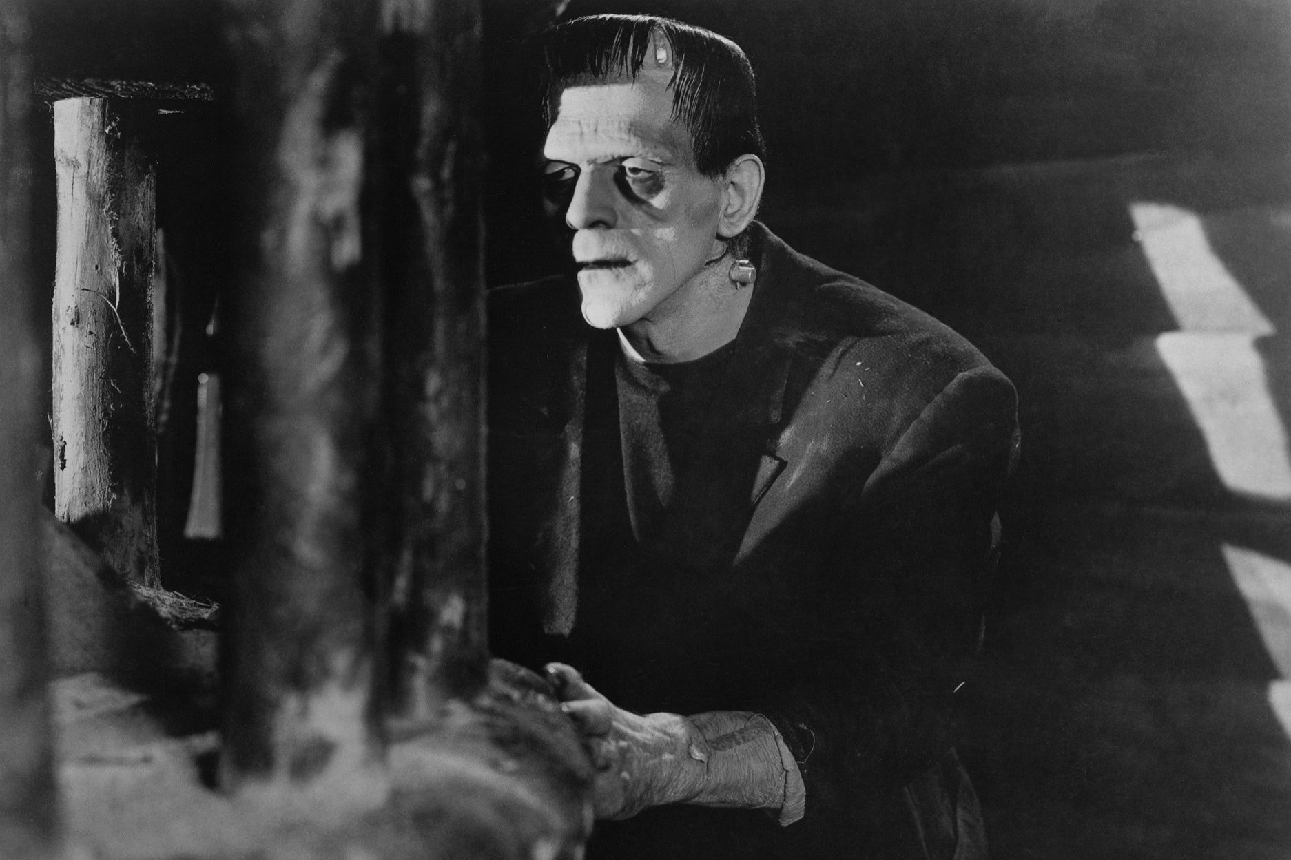 Frankenstein (1931): Dr. Frankenstein'ın Leviathan'ı